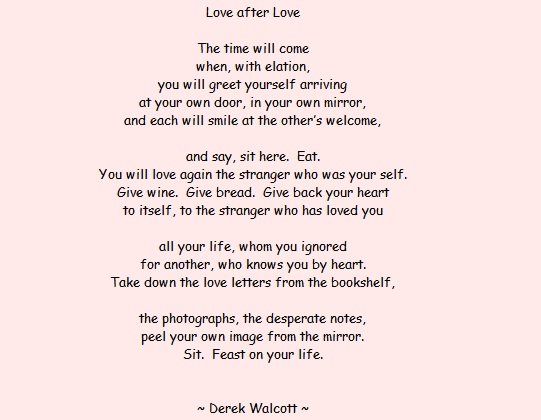an analysis of derek walcotts poem The fist - derek walcott the fist clenched round my heart with each poem i post, i provide some small analysis, which will hopefully provoke some thought.