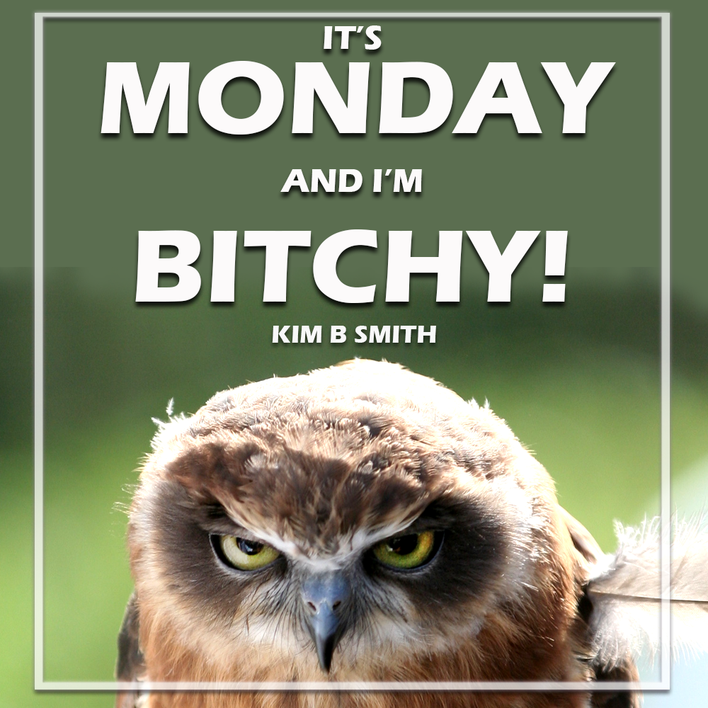 It's Monday and I am Bitchy!
