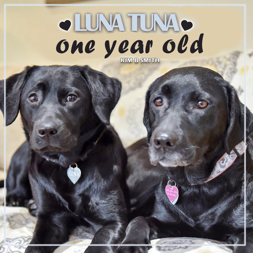 Luna Tuna is one year old.